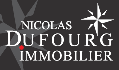 NICOLAS DUFOURG IMMOBILIER